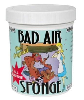 再补货 美亚畅销榜The ORIGINAL Bad Air Sponge 除味中和剂 可除甲醛